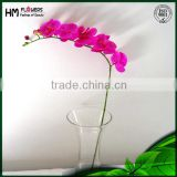 Artificial Phalaenopsis Orchid Real Touch Latex Phalaenopsis Orchid