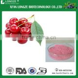 Factory supply with vaccum,drum packed Acerola Cherry Fruit Powder acerola fruit powder with Vitamin C 25%