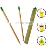 new wood flower fruit grass sprout growing pencil with seeds