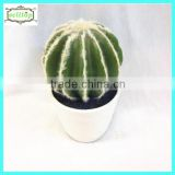 18cm high quality real touch ball cactus