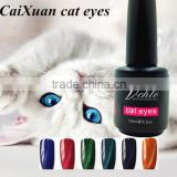 2015 new arrival nail gel polish ,soak off uv gel nail polish, magnetic cat eye gel