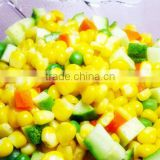 Fresh Sweet Corn Kernels Vacuum Packed Non-GMO Instant Salad Ingredient