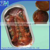 New Fish Product Type and Canned Style canned sardine