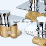 European Concealed Thermostatic Mixing Valve for Shower