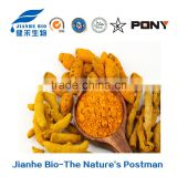 Manufactory supply Turmeric Root Extract, bulk organic curcumin powder 95% with free sample