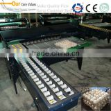 High quality automatic egg grading machine