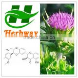 supply high quality Milk Thistle Extract Silymarin 80%,Silybin Isosilybin 30%,Water Soluble,Herbal Plant Silybum Marianum
