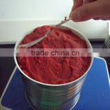 canned tomato paste tomato paste tomato paste production line tin packing