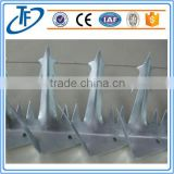 security anti wall climb spike /barbed wire razor wire mesh wall spike