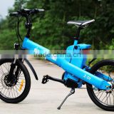 Seagull,cheap cargo bike electric