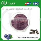 OEM Private Label Acai Berry Extract Powder                                                                         Quality Choice