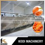 DW Model Continuous Carrot Mesh Belt Dryer/Conveyor Dryer/Band Dryer