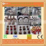2014 hot seller pet food manufacturing plant