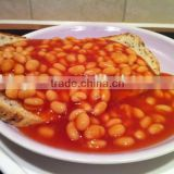 we are supply canned vegetables , Canned broad beans in tomato sauce for sale