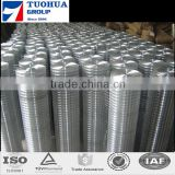 Galvanized&PVC Coated 1/2''*1/2'' Welded Wire Mesh Rolls Wholesale Supply