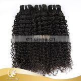 Wholesale Best Price 100% Unprocessed Virgin Human Hair Brazilian Kinky Curly Hair Weaving Bundles Kinky Human Hair Extensions