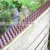 Plastic anti bird pigeon control spikes strips bird products supplies