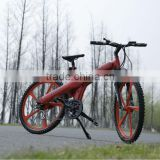 Flash - 2014 special designed mountain electric bike direct factoey