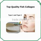 Pure collagen powder 100% natural fish scale powder hydrolyzed fish collagen powder with fair price