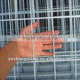 hot sales! anping 50x100 galvanized welded wire mesh/PVC coated/stainless steel welded wire mesh panels for chicken cage