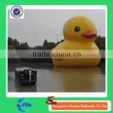 giant customized animal inflatable promotion duck for advertising                                                                         Quality Choice