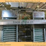 Low cost chicken egg poultry farm equipment for sale                                                                                                         Supplier's Choice