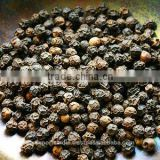 Black Pepper Oil (CNS) in Bulk