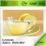 Organic Freeze Dried Fruit Powder