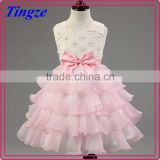 Lastest wholesale pink chiffon Layered dress flower girl net dresses TR-WS33