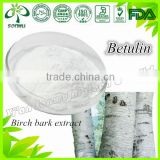 Birch bark extract betulin powder