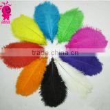 Wholesale multicolor decotation ostrich feather