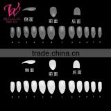 wholesale 100pcs/box&5100pcs/bag Natural French Nail Tips False Acrylic Nail Art Tips NT-83/82/85