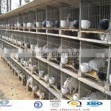 Favorites Compare stainless steel rabbit cage In Rigid Quality Procedures With Best Price(Manufacturer)