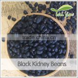 Types of China origin dry black beans, wholesale price best selling chinese 2016 black beans black kidney beans