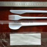FDA disposable plastic cutlery set with white napkin
