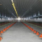Low Cost Prefabricated Chicken Farm Construction