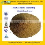 Factory Supply Top Quality Meat and Bone Meal