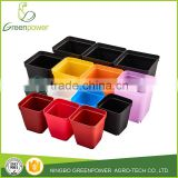 Small square Flower pot Mini Gardening Plastic Nursery Pots Square Flower Bonsai Planter Pots
