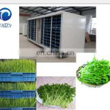 High quality grain vegetables sprouting machine Stainless steel soybean sprout extruder machine bean sprout growing machine