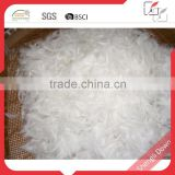 Raw material white goose down and feather                                                                         Quality Choice
