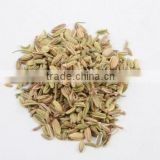 GMP Certificate fennel seed extract powder