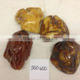 Natural baltic amber stone 500-600 polished