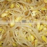 Canned Bean Sprout For Nice Recipes