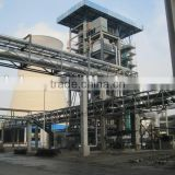Circulating fluidized bed gasifier