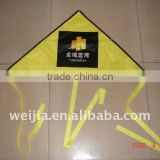 promotional polyester delta kite