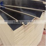 10mm good quality poplar wood finger joint laminated board from China for the Middle East