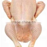 Whole Frozen Chicken Grillers. Halal Available
