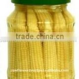 Fresh pack Baby Corn in Brine 2015