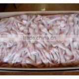 High Quality Brazilian Frozen Chicken Feet and Paws Available