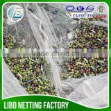 100% virgin HDPE falling fruits harvest net/breaking resistance olive falling collection net/chestnuts picking nets, Olive net